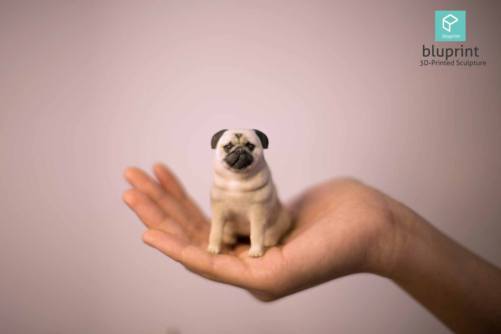 Bluprint 3D Figure Pet Pug on hand