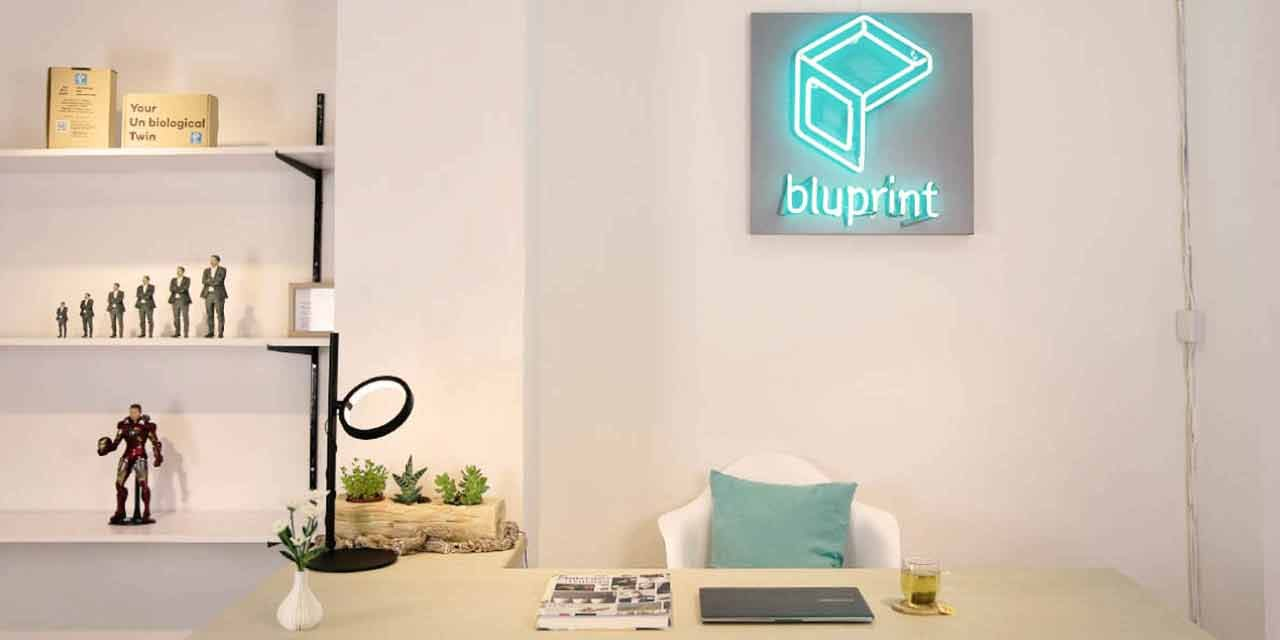 Bluprint Company Out Look